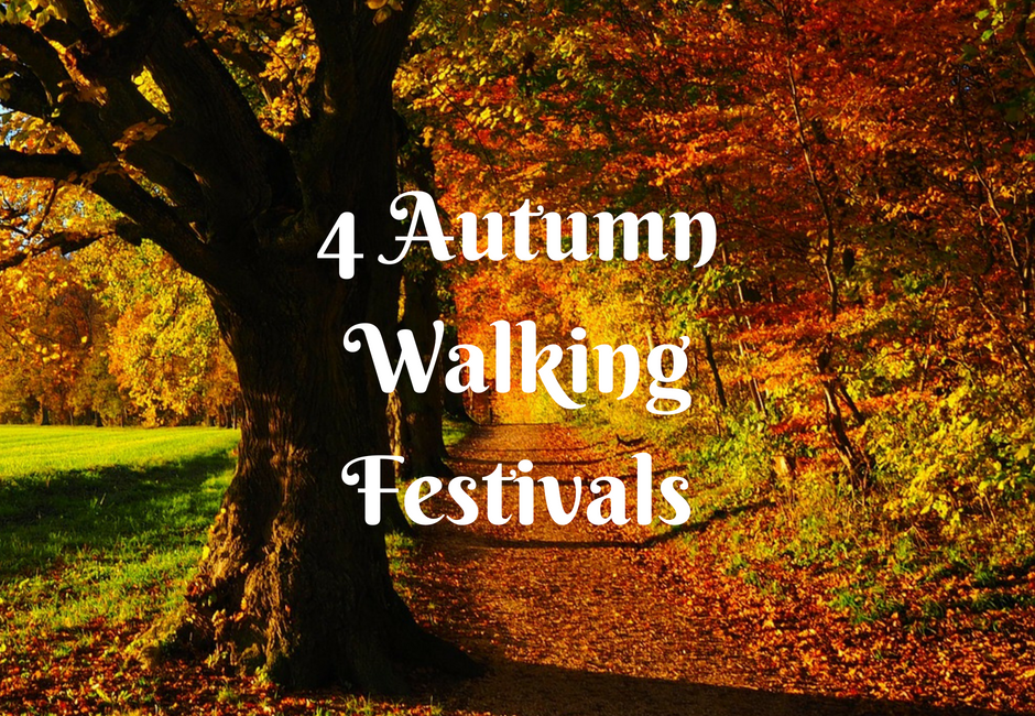 autumn walking festival