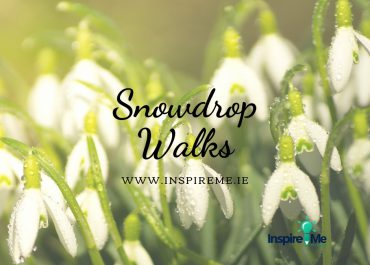 Snowdrop Walks